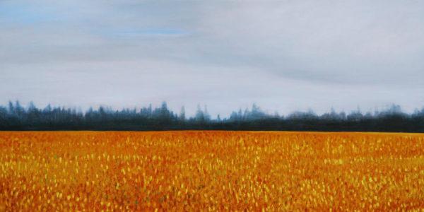 Going Home / Somewhere Borrowed with art by Lynda Diamond