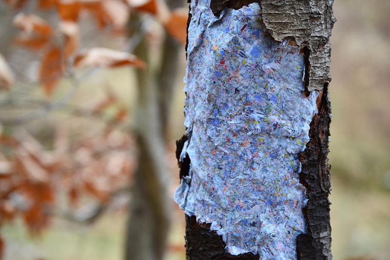 Art by Jackie Partidge showing a tree patched with a paper map.