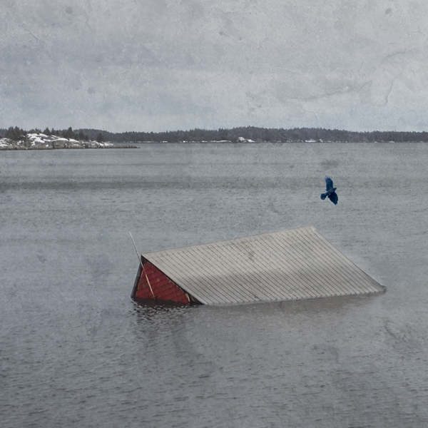 Photograph by Sara Harley showing a building submerged in water and one bird flying overhead.