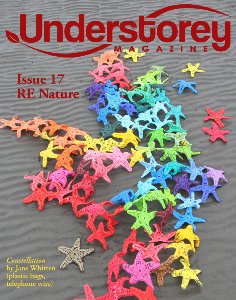The cover for Understorey Magazine Issue 17 showing sea stars created by Jane Whitten with plastic bags and telephone wire.