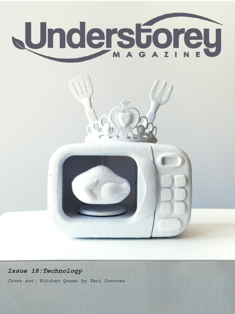 cover for Issue 18 showing art by Teri Donovan (fabric microwave oven with crown)