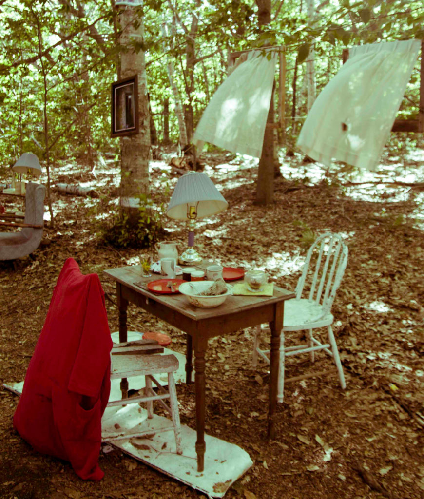 photo showing artifacts from an abandoned house displayed in a forest