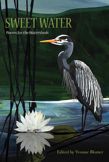 Cover image for Sweet Water showing a herson and pond