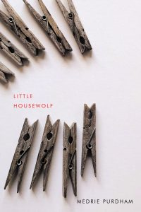 book cover for Little Housewolf showing a collection of wooden clothespins