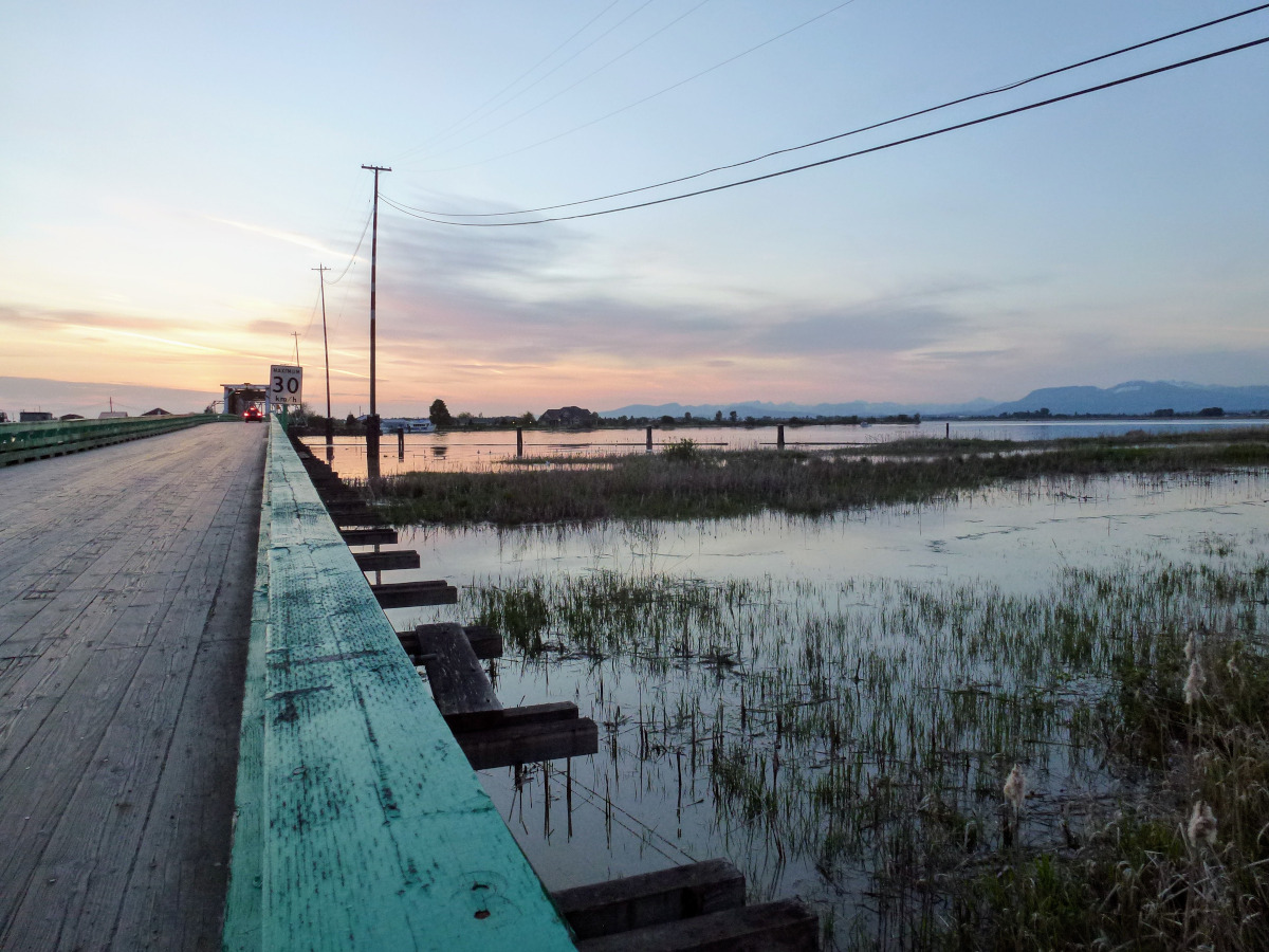 photo of a long wooden bridge over shallow water at twilight