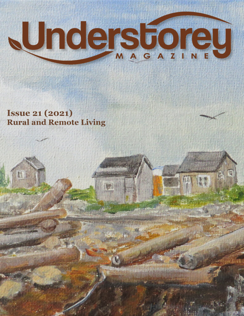 cover of Issue 21 with painting of small wooden structures on a shore